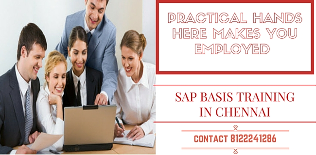 Best SAP BASIS Training in Chennai